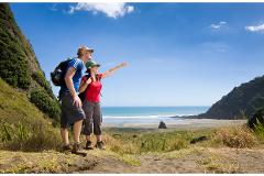 Private Auckland Guided Wilderness Walk