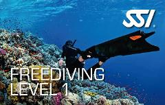 Freediving Level 1 Course - Great Barrier Reef Experience