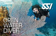 Open Water Course on the Great Barrier Reef
