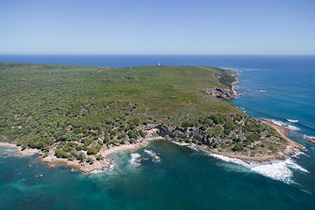 Pick a Lighthouse Scenic Flight (Margaret River)