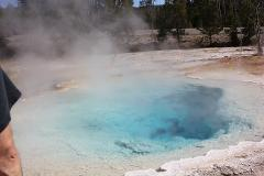 Yellowstone Half Day Tours for 1 OR 2