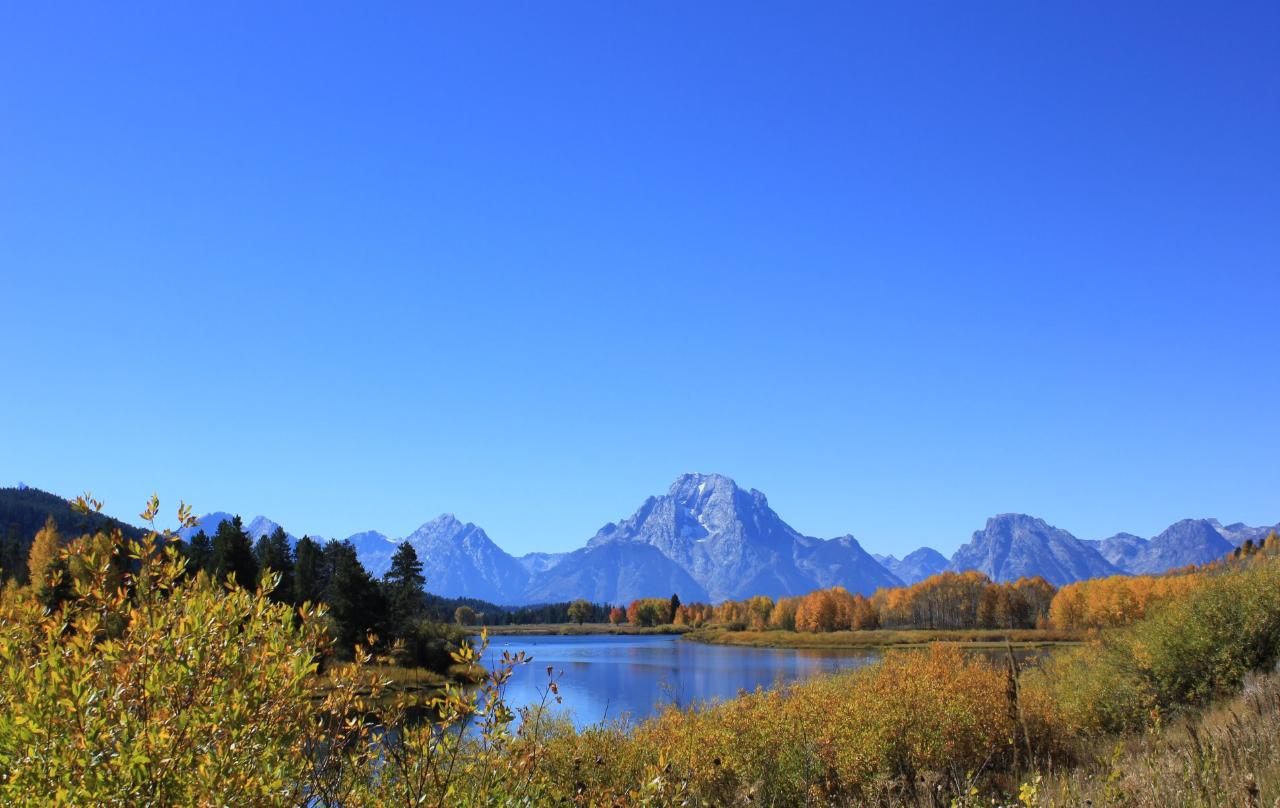 3 Day Yellowstone Upper, Lower Loops & Grand Teton Tours for 1 to 5