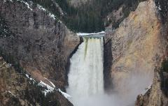 Yellowstone Upper Loop Tours for 1 to 5