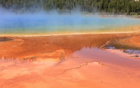 Yellowstone Full Day Tours for 2