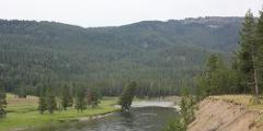 Yellowstone Full Day Tours for 1 Person