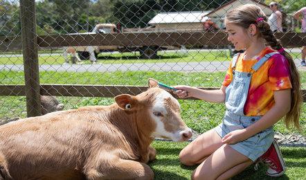 Annual Farm Pass
