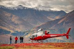 Denali Heli-Hiking Adventure
