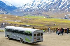 Denali National Park Adventure (Summer)