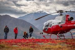 Taste of the Tundra by Helicopter