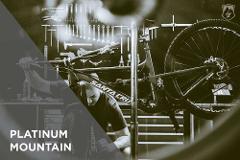 Platinum Mountain Service