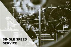 Single Speed Bike Service