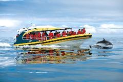 Port Arthur Tour and Wilderness Cruise from Hobart