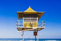 Gold Coast Day Tour from Brisbane with Canal Cruise and Lunch