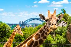 Australia Multi-City Flexi Attractions Pass