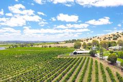 Barossa Valley Wine Tour from Adelaide (Budget)