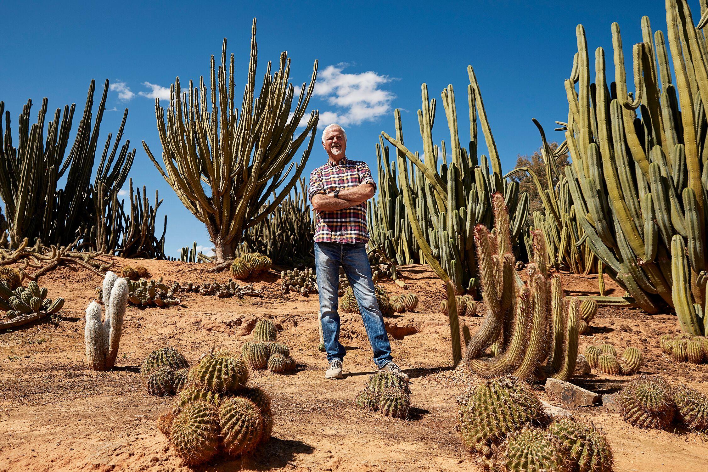 Cactus Country Garden Entry
