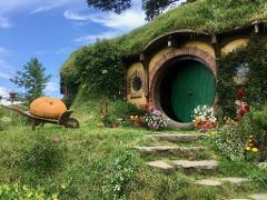 Waitomo Caves & Hobbiton Private Tour ex Auckland, Taupo or Rotorua