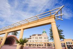 Shore Excursion - Napier City Highlights & Winery Private Tour (4 Hours)