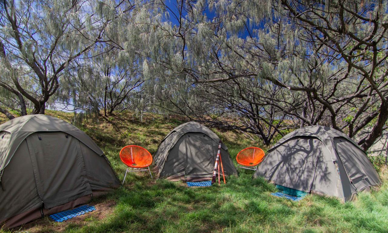 3Day/2Night Fraser Island Wilderness Beach Camping 4WD Adventure