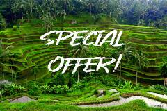 Ubud Sightseeing & Kintamani Tour
