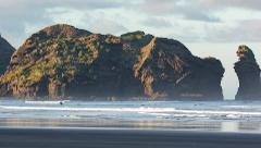 Piha Experience Eco Day Tour
