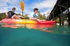 Guided Kayak Tour - 11:00am