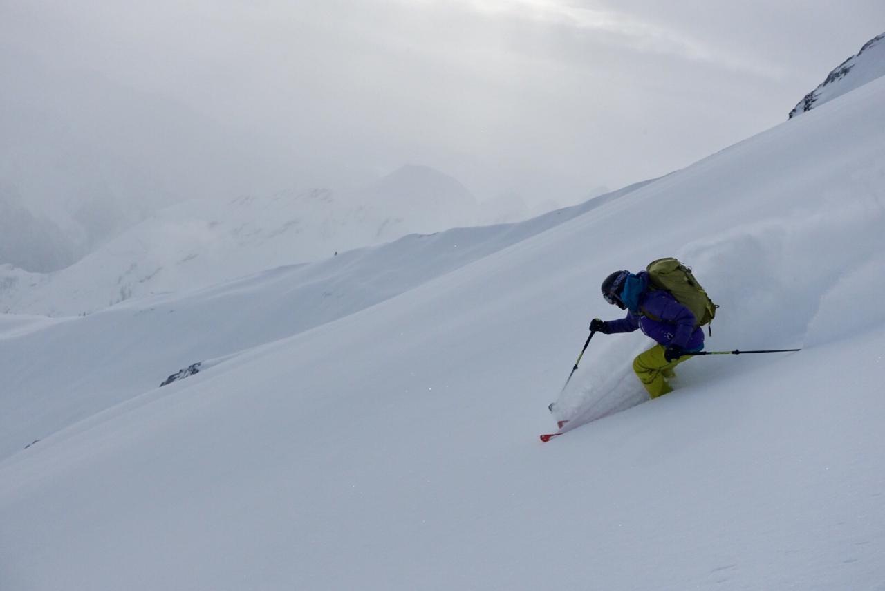 Expert  Ski Touring