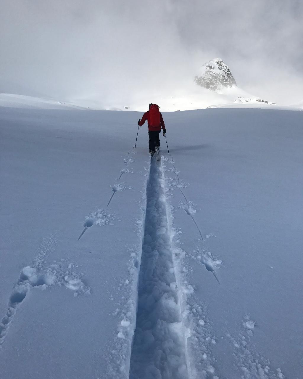 Advanced Ski Touring
