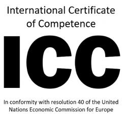 ICC Assessment