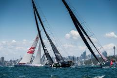 Experience - Luxury Cruiser - Boxing Day Cruise Start of Rolex Sydney Hobart Yacht Race Thursday 26th December 2019 11am to 4pm