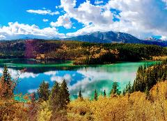 Yukon Discovery Tour -6.5 HR