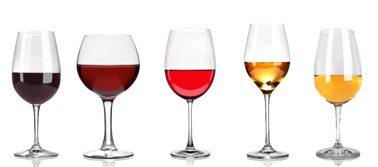 Wine and Vine Education Course