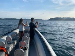 Book the Boat - Whale Watching Terrigal