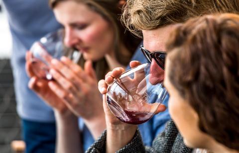 Tasmanian Wine Tour – Full Day Tour Tasmania Australia