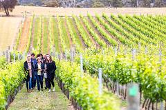 Gift Card - Tasmanian Wine Tours - Day Tour (Public)