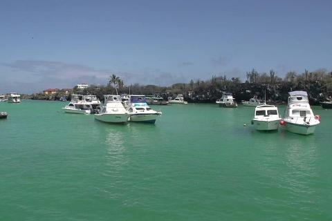 Transfer from Santa Cruz Island to San Cristobal Island