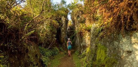 Floreana_trail