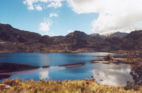 Shared Cajas National Park Full Day Tour