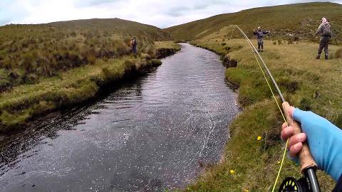 Private Fishing Full-Day Tour in Cajas National Park from Cuenca