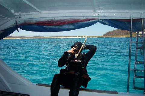 diving_pitt