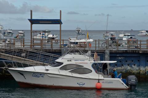 Transfer from Santa Cruz Island to Isabela Island