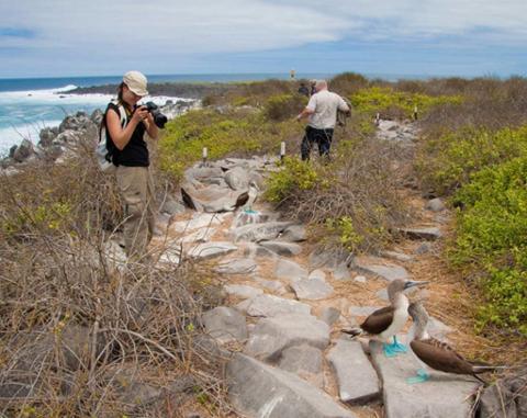 north_seymour_island_galapagos4_1024x812