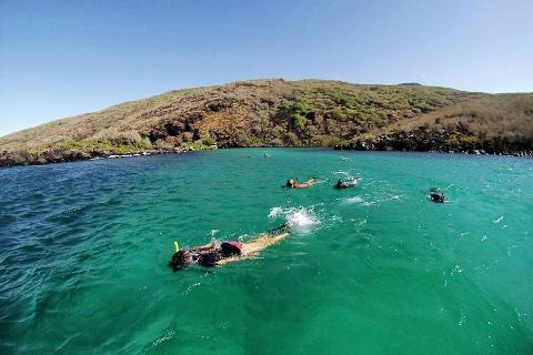 Full-Day Tour with Lunch to Santa Fe Island and Playa Escondida