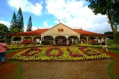 Dole Plantation to Waikiki Shuttle