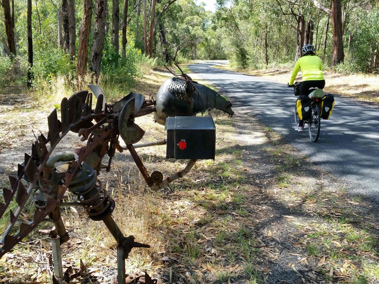 Strzelecki Explorer Cycle Tour 6D 5N