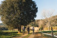 Pirinexus Cycling Tour - Self Guided with Luggage Transfers