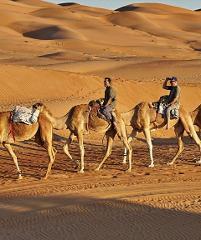 Kamelsafari durch die Wüste Wahiba Sands