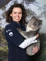Cleland Wildlife Park - Daily Koala Hold