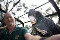 Cleland Wildlife Park - Cockatoo Experience