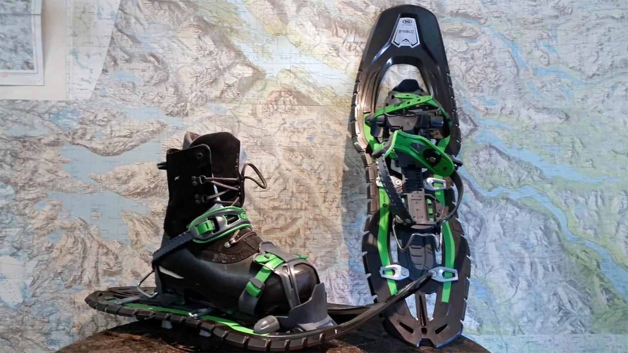 Snowshoes ink poles